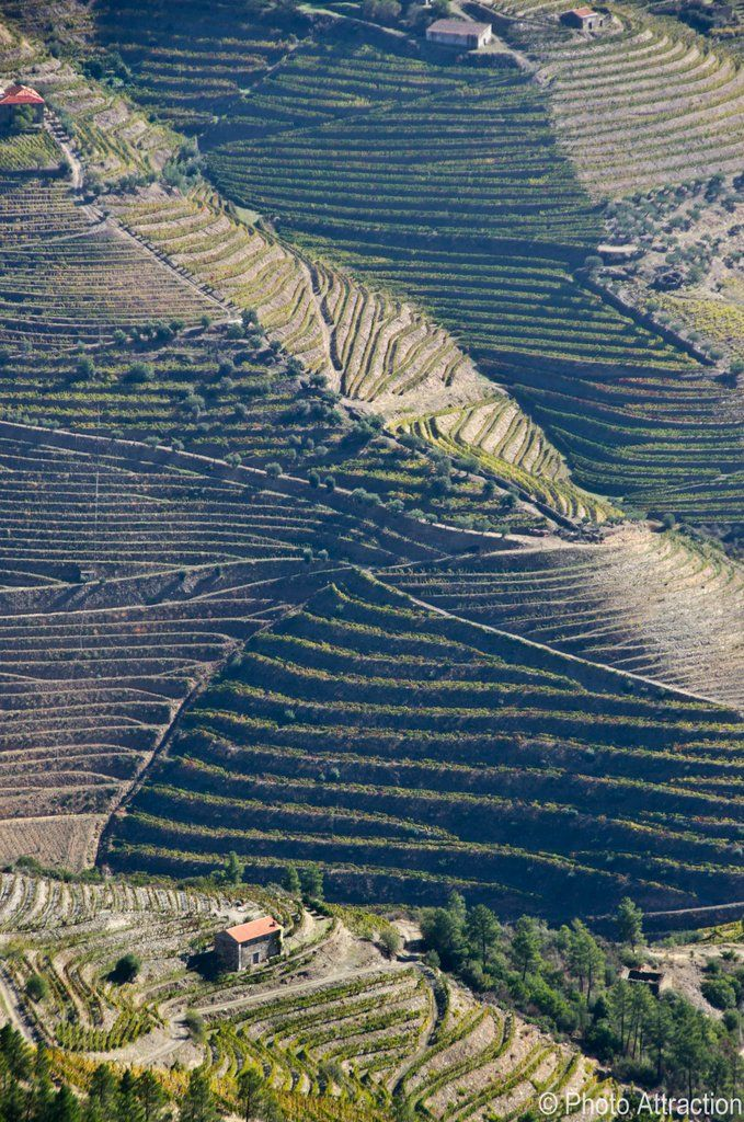 Douro - Portugal First demarcated wine region in the world, UNESCO