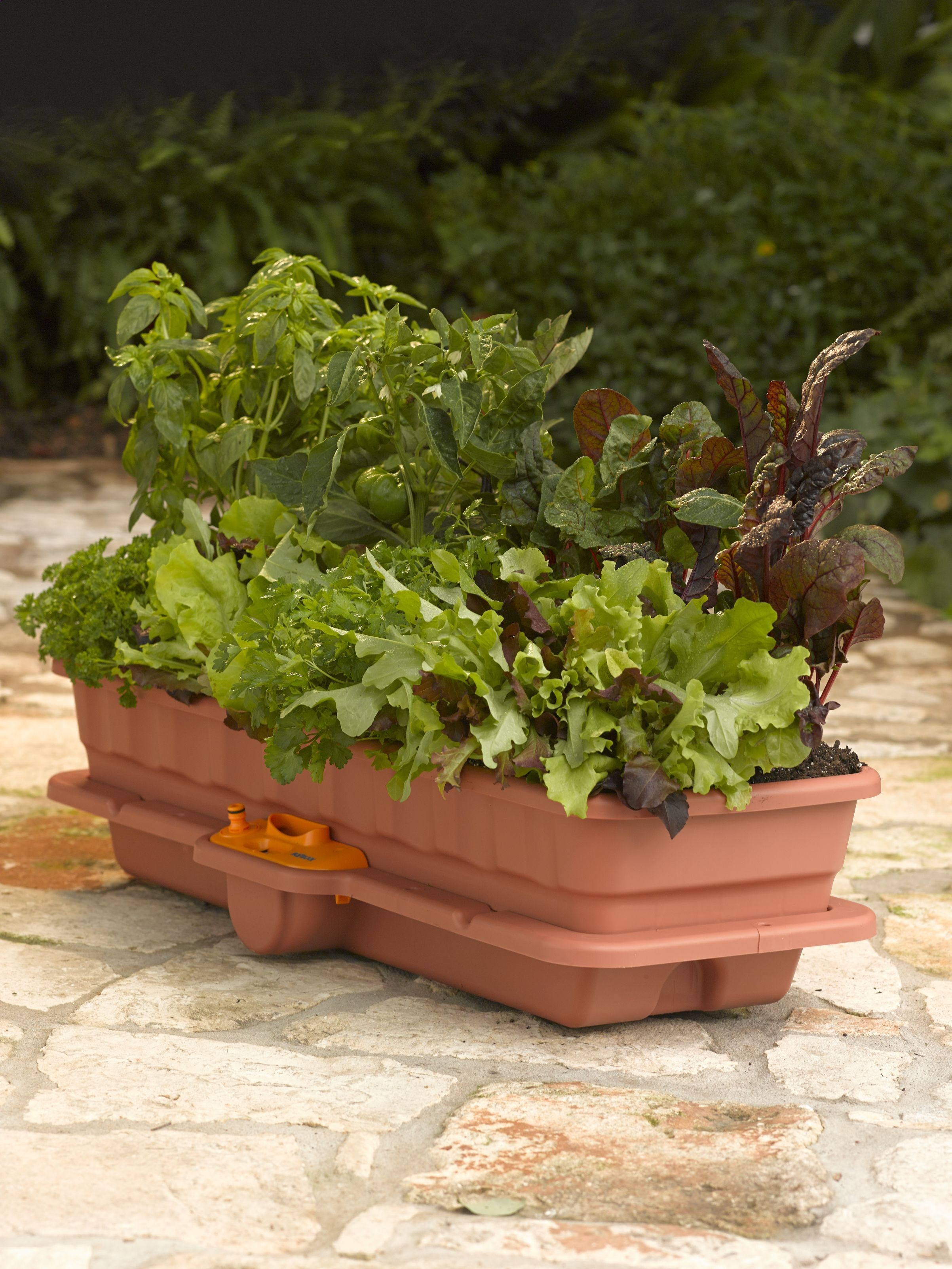 Self Watering Planter For Flowers Vegetables Gardener S Supply Other Photos Show How