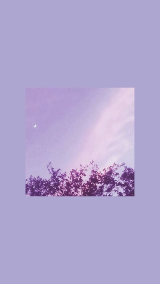 Photo of Wallpaper Aesthetics Pastel Purple Iphone – cute animals