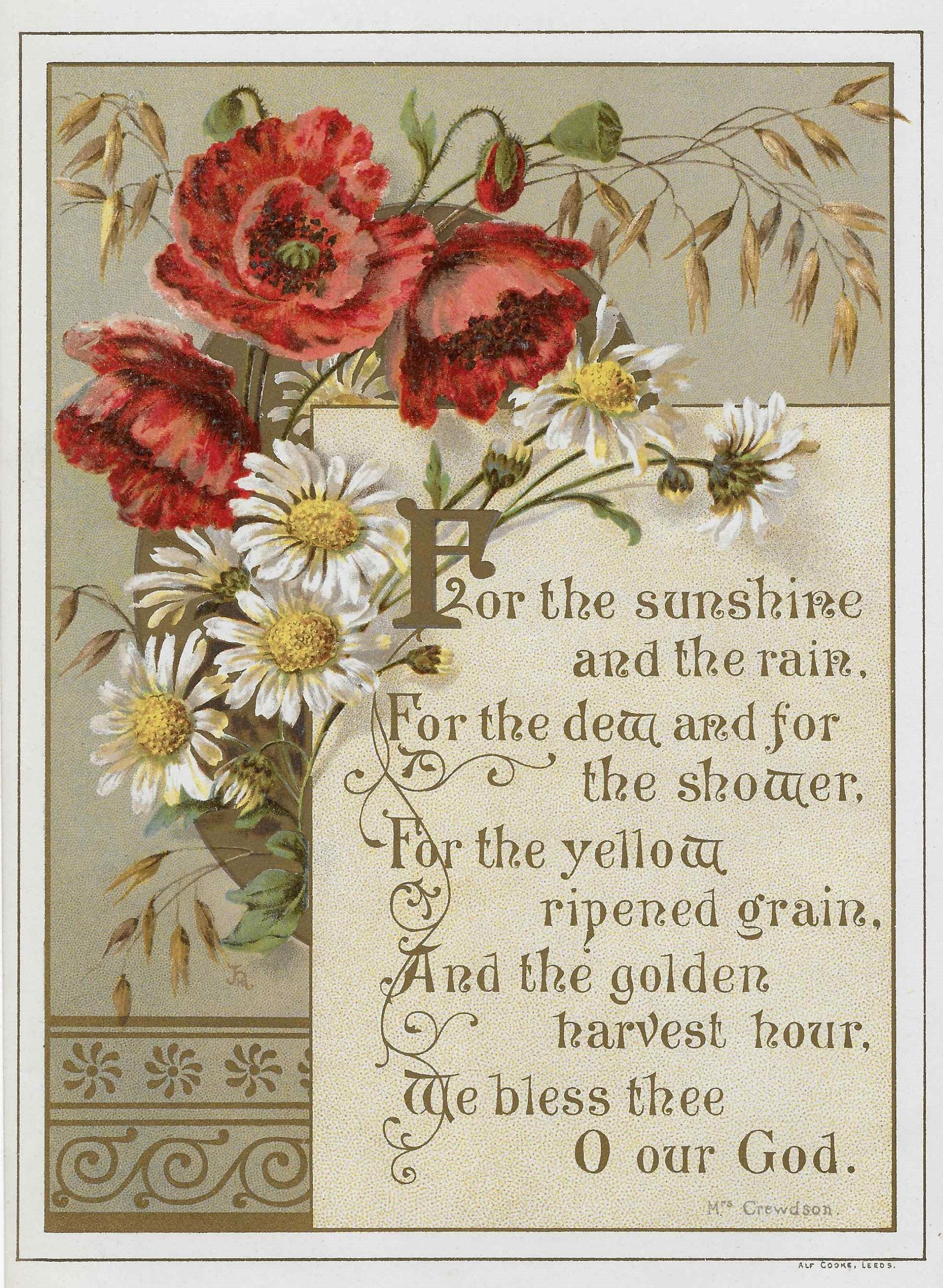 Learn The Victorian Meaning Of Flowers Free Vintage Printables Adirondack Girl Heart Free Vintage Printables Language Of Flowers Flower Meanings