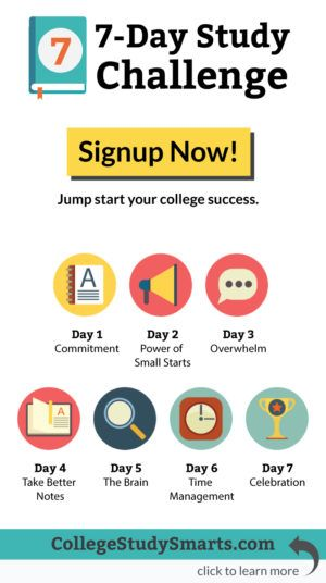 7-Day Study Challenge Stop Procrastinating  Get Motivated for - college success tips