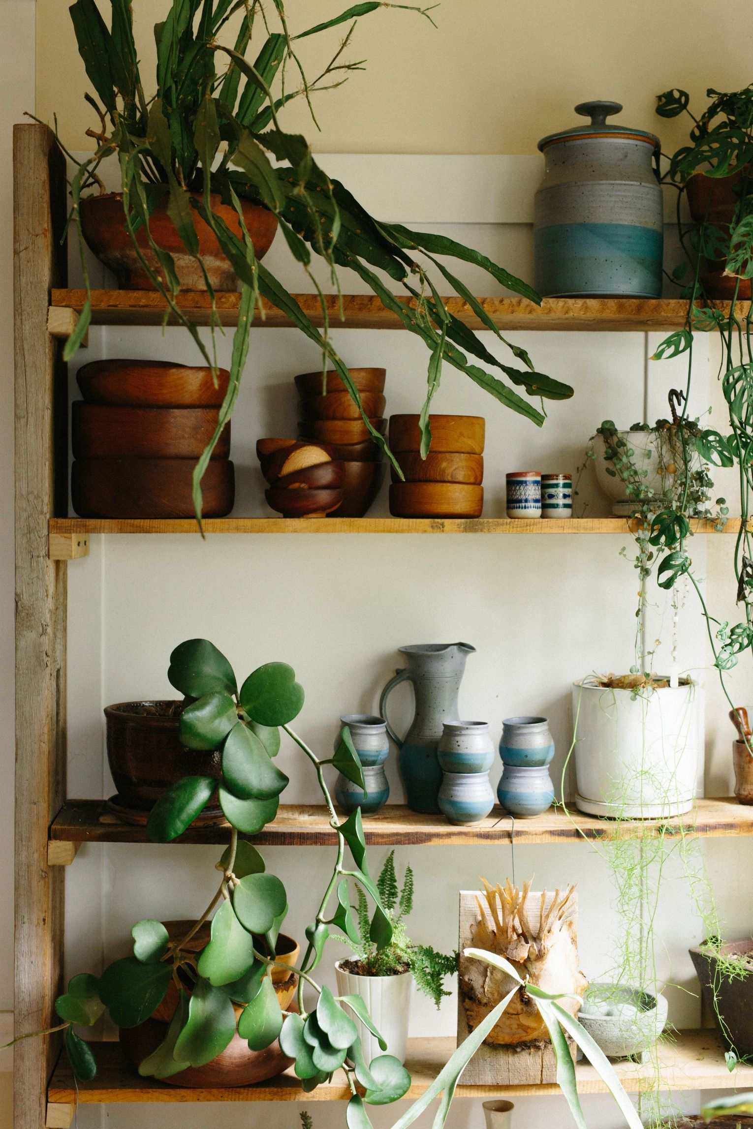 Urban Outfitters Blog UO Guide: Small Spaces Gardening