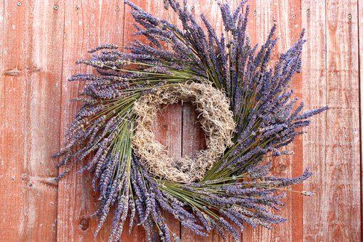 Photo of How to Make a Boxwood Wreath | eHow.com