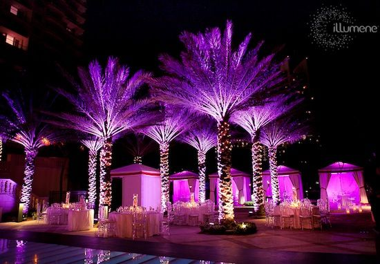 Modern uplighting for weddings and corporate events for Outdoor lighting uplight
