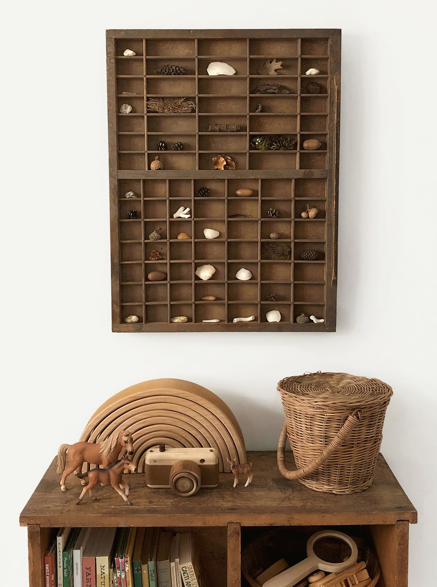 How To Set Up a Nature Shelf