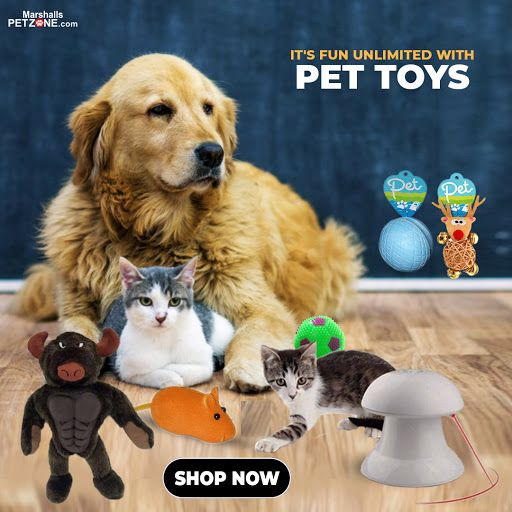 Pin On Pet Deals