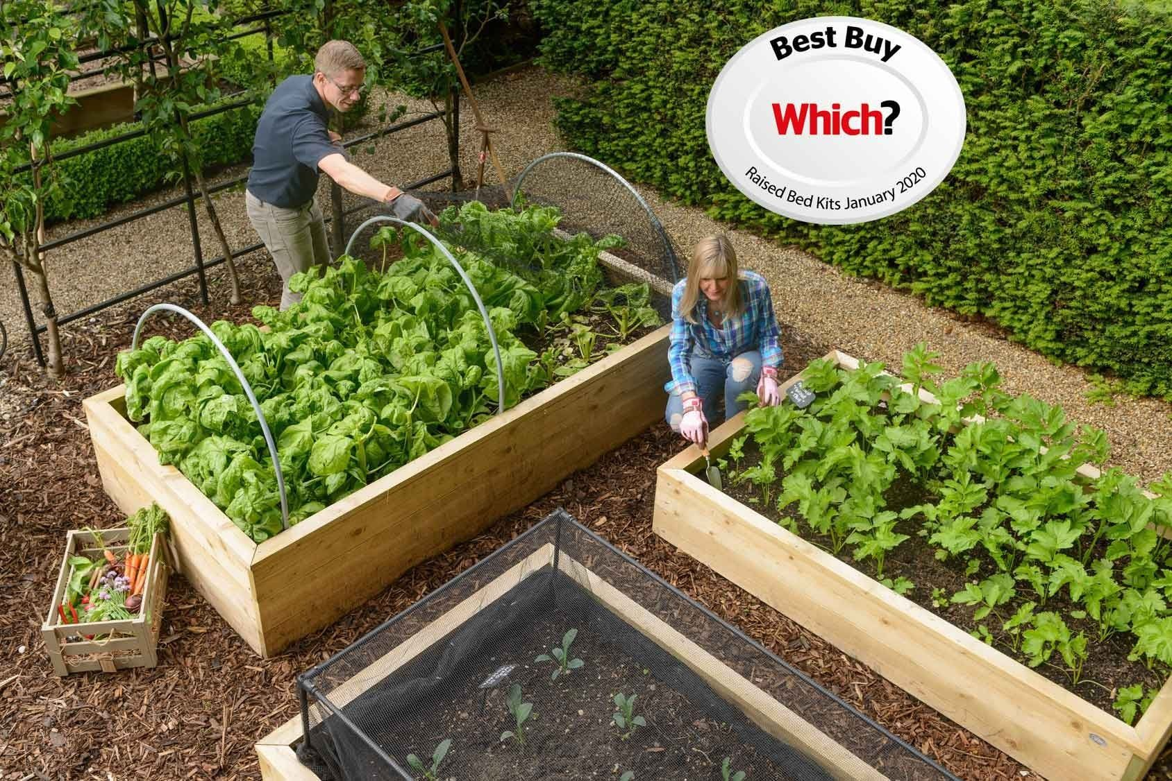 Standard Wooden Raised Beds Raised Garden Beds Raised Beds