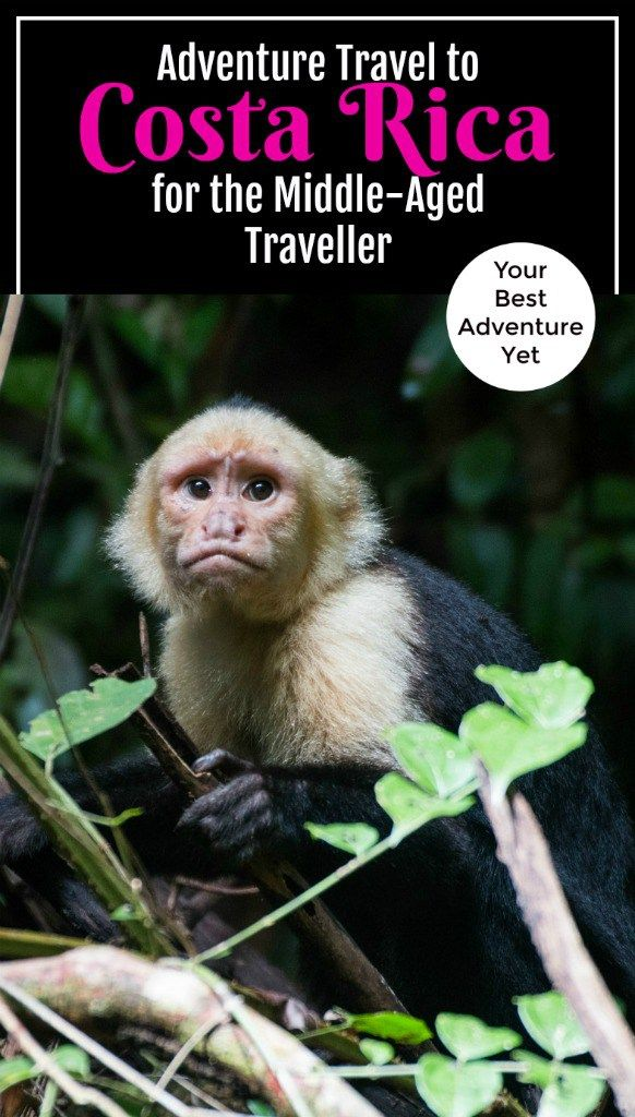 If you are of retirement age and looking for adventure, this safe and clean country is the perfect location for you. Read on to see the best activities Costa Rica has to offer. #CostaRica #retirementtravel #TBIN Photo taken by Korf-Adri on Flickr.