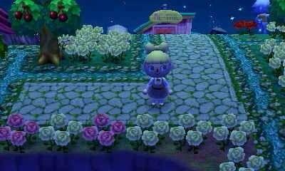 path roses
