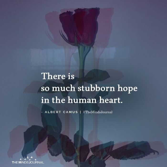 There Is So Much Stubborn Hope In The Human Heart