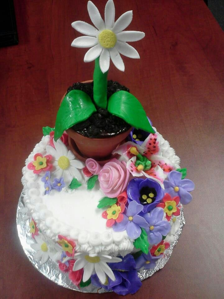 Daisy cake created by Care