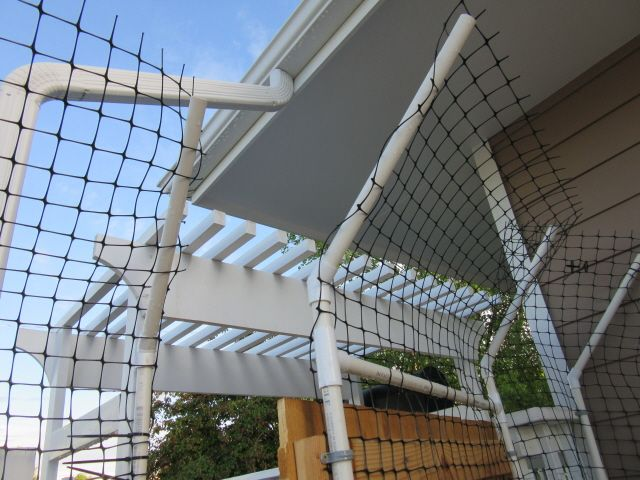 cat fence made from pvc pipe wood gate