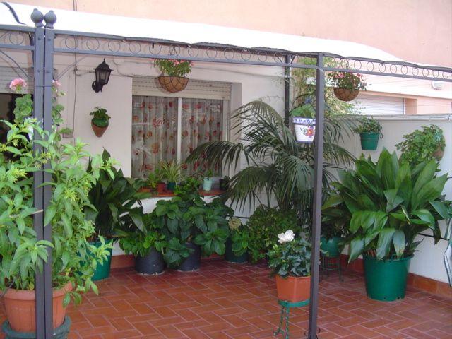 Patios de casas pobres buscar con google patios - Toldos para patios interiores ...