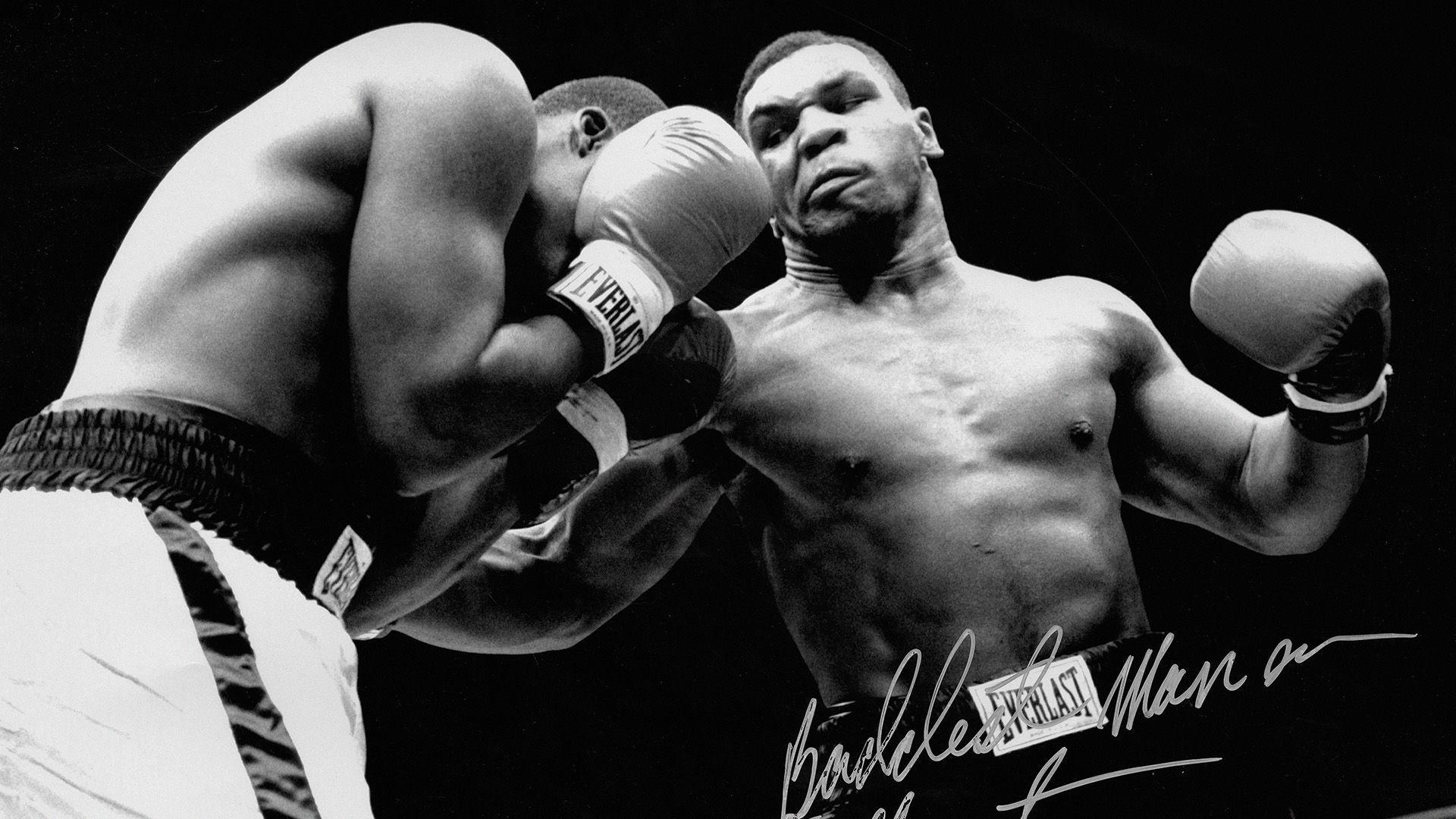 Mike Tyson Wallpapers Hd Wallpapersafari Mike Tyson Tyson Sports Celebrities