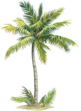 Wallies Palm Tree 43 By 65 Inch Wallpaper Mural Palm Tree Drawing Beach Art Painting Tree Art