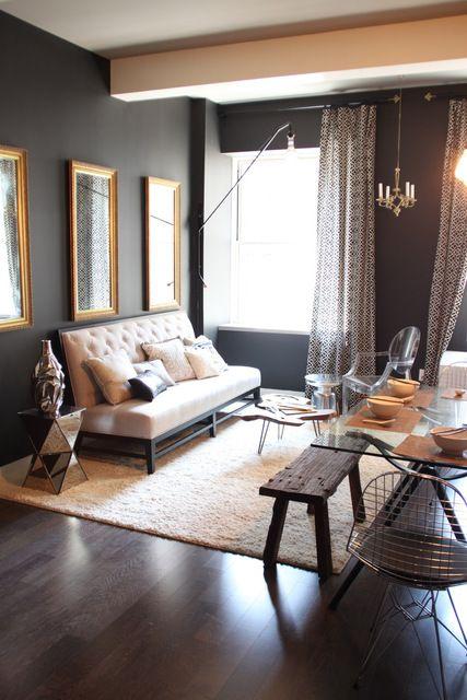 wow. wall color. natural light. dark wood. sofa. lighting.