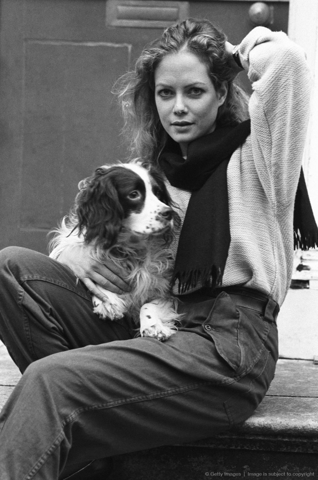 Actress Jenny Seagrove Millions Have Loved Springers Because There Is A Lot To Love About Them Springer Spaniel Spaniel Celebrity Dogs