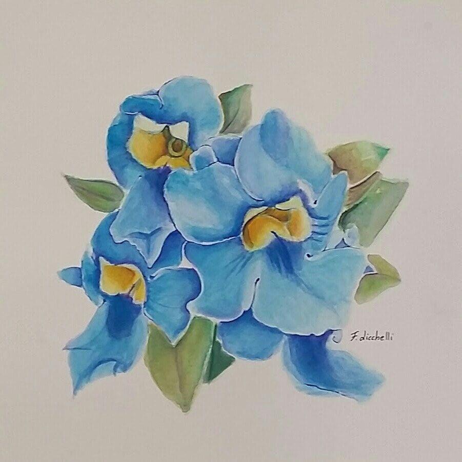 New acquerello fiori azzurri pezzo unico disegno originale ooak misure 28x28cm 11x11 - Camera da letto azzurro polvere ...
