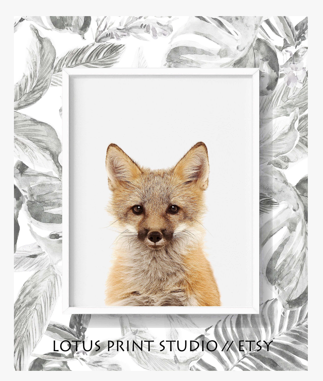 Baby Fox Print Nursery Fox Art Animal Art For Kids Room Gifts For Kids Red Fox Poster Animal Posters Printable Art Prints 494 Printable Art Prints Fox Print Fox Art