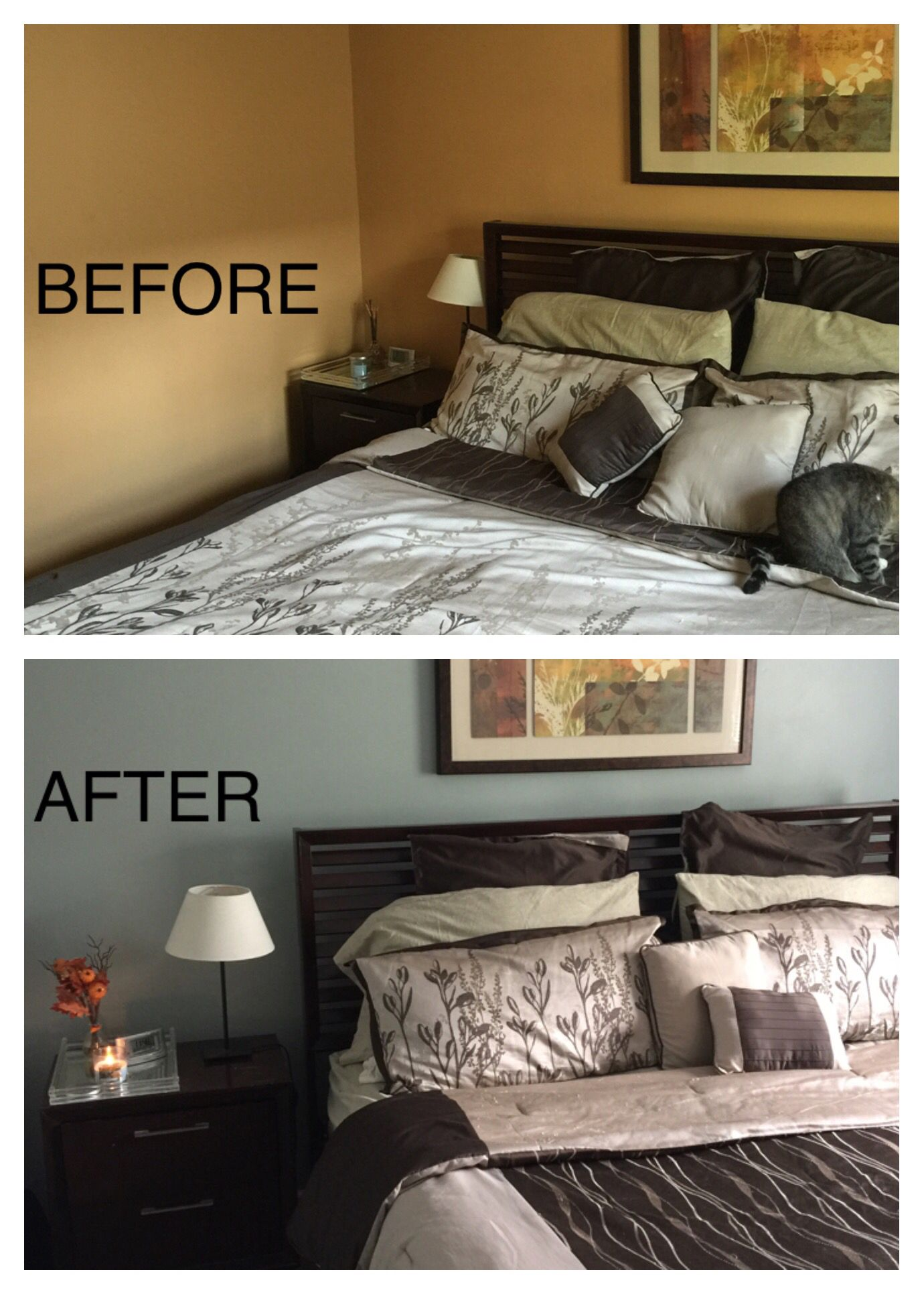 It S Amazing What A Little Paint Can Do To A Room Out With Behr S Pumpkin Butter And In With Sh Relaxing Paint Colors Sherwin Williams Paint Colors Home Decor