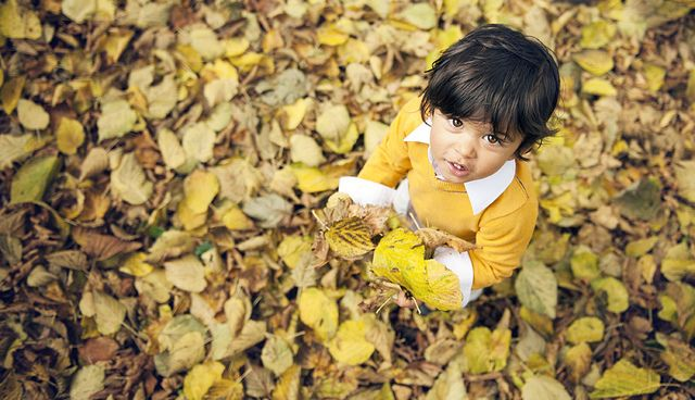 Autumn900 | Flickr - Photo Sharing!