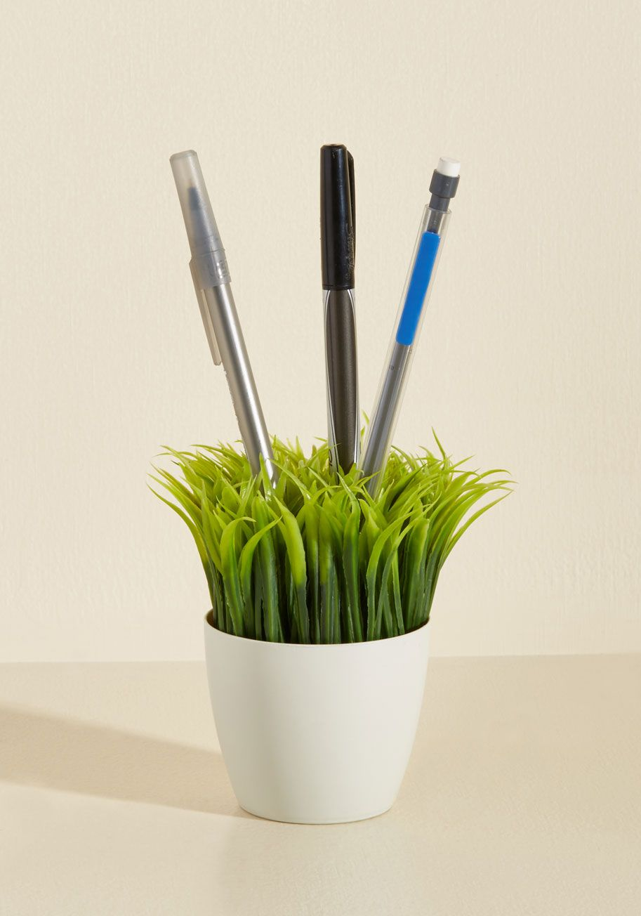 Extra Soar-age Shower Caddy | Supplies, Desk plant and Scissors