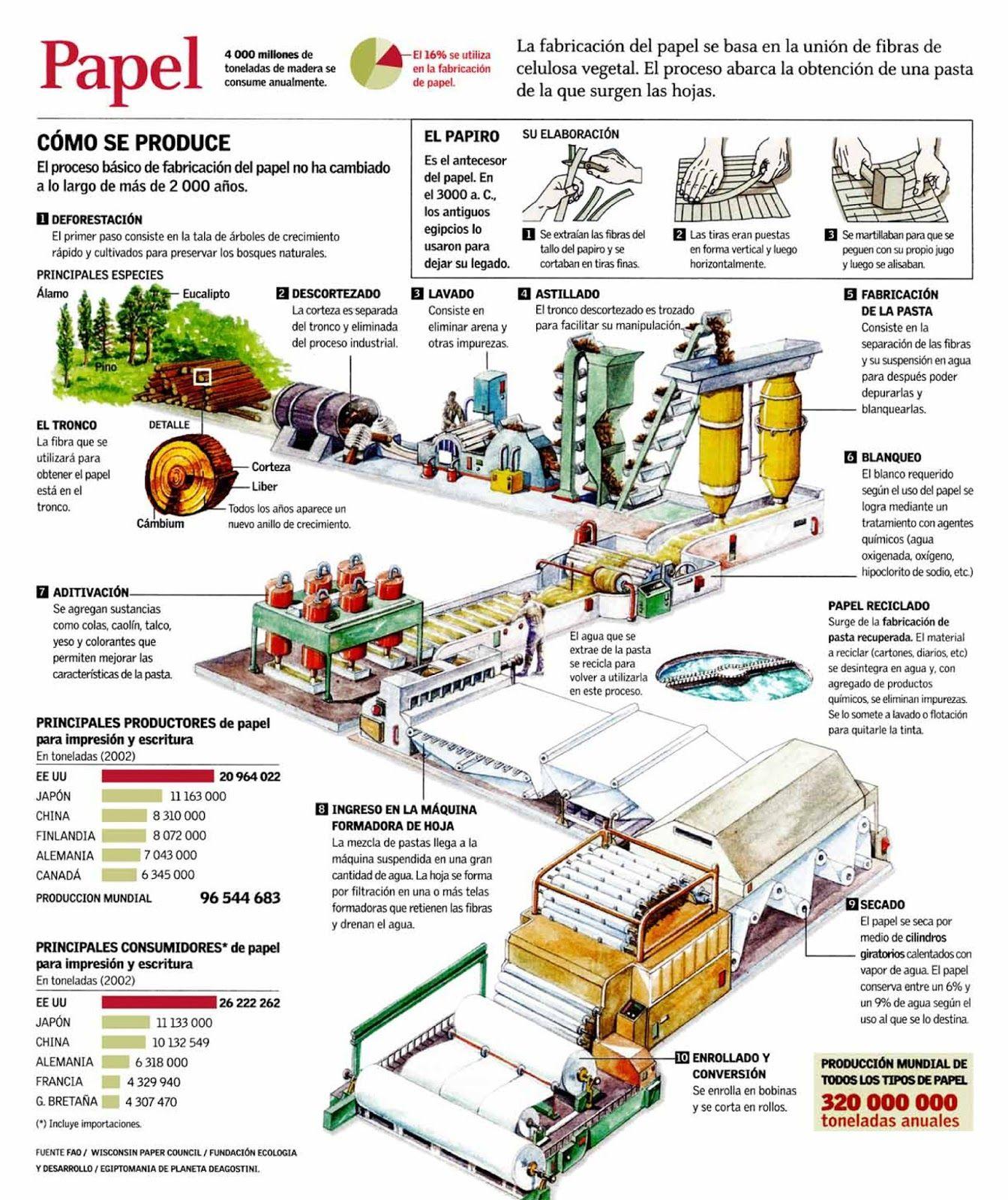 Circuito Productivo De La Caña De Azucar : Tecnología edh: infografía: proceso de producción del papel