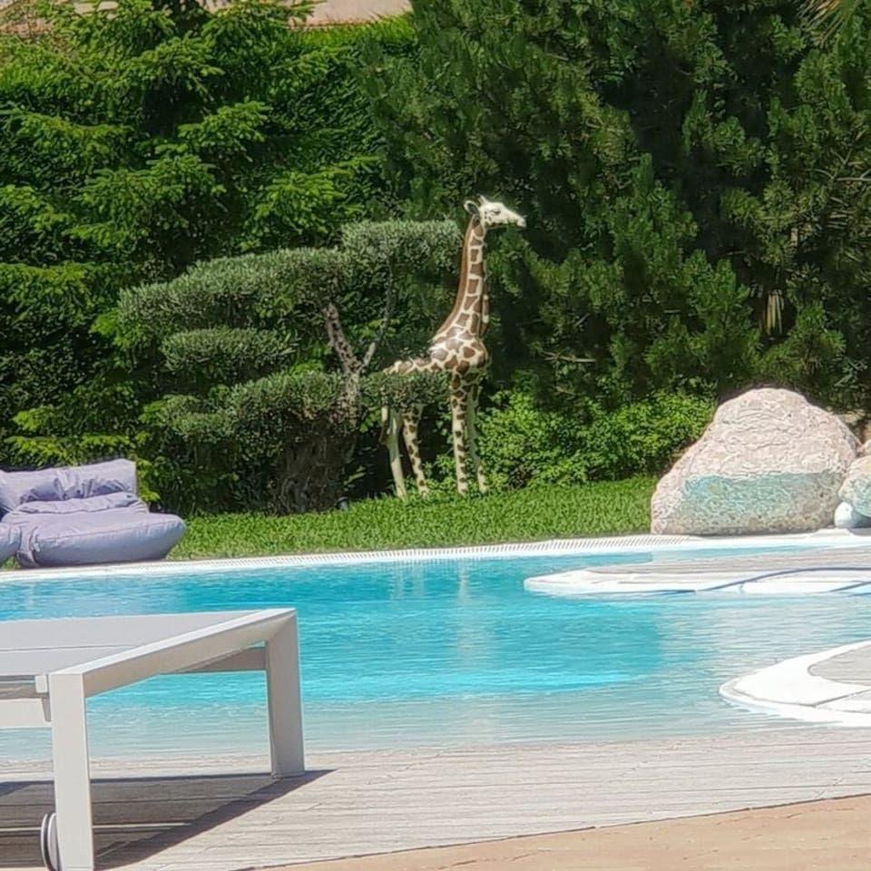 chaleureuse et romantique Houses for Rent in