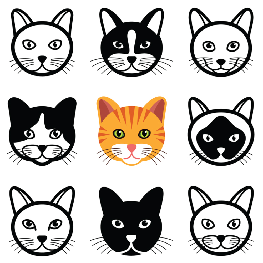 Cat Animal Cartoon Face Icon Collection Cat Face Drawing Cat Face Drawing Cartoon Faces
