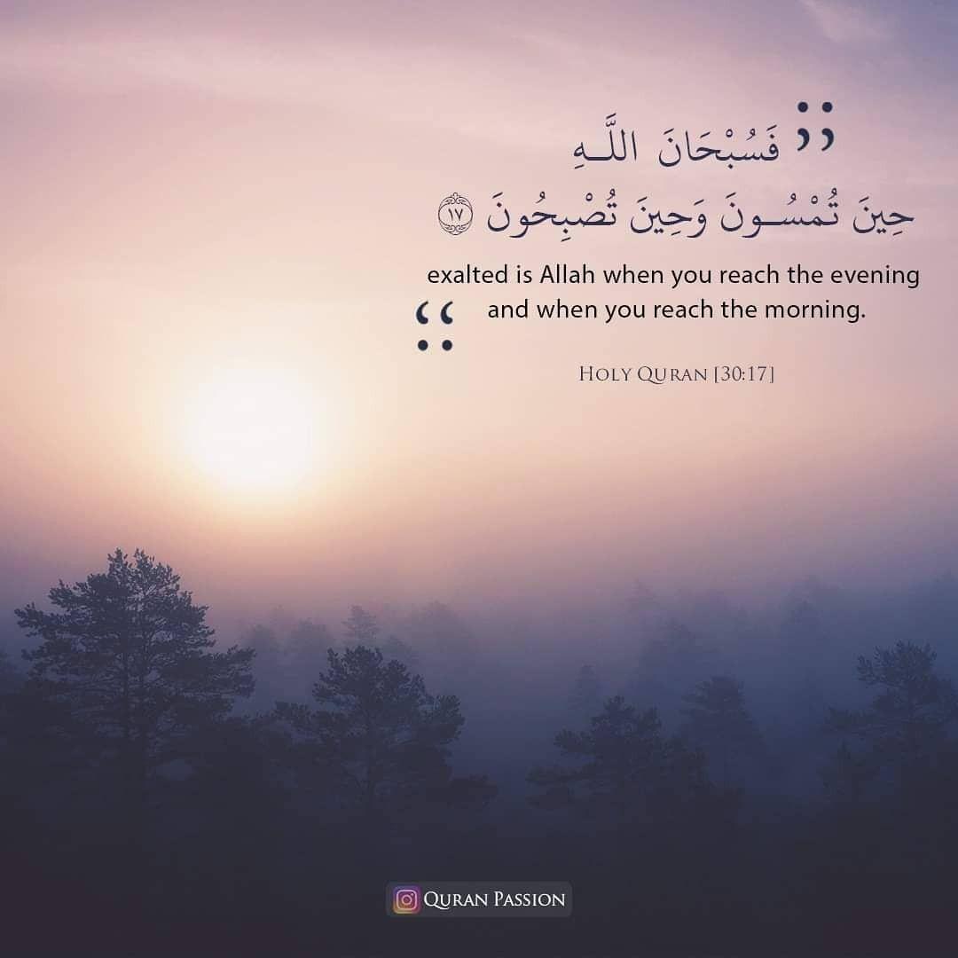 Pin on Islam The Way of Life ♡