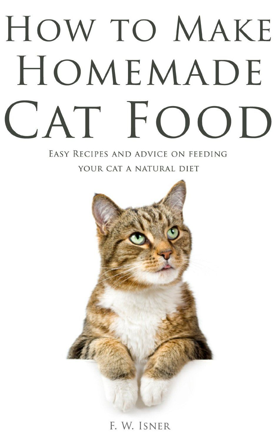 How to make homemade cat food easy recipes and advice on