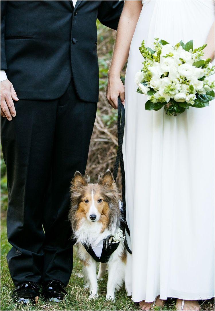 The Smead Wedding Dog Wedding Wedding Flower Inspiration