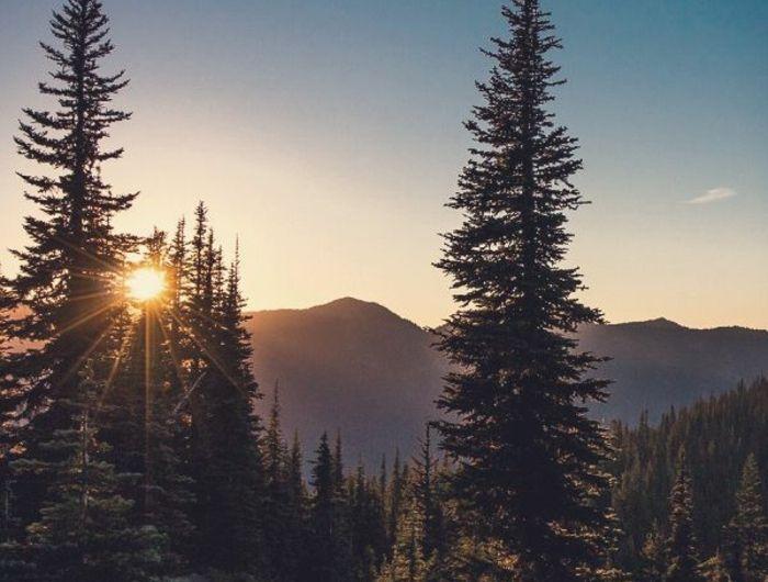 Les Plus Belles Fonds D Ecran Paysage En 45 Photos Paysage Paradisiaque Paysage Et Fond Ecran Nature