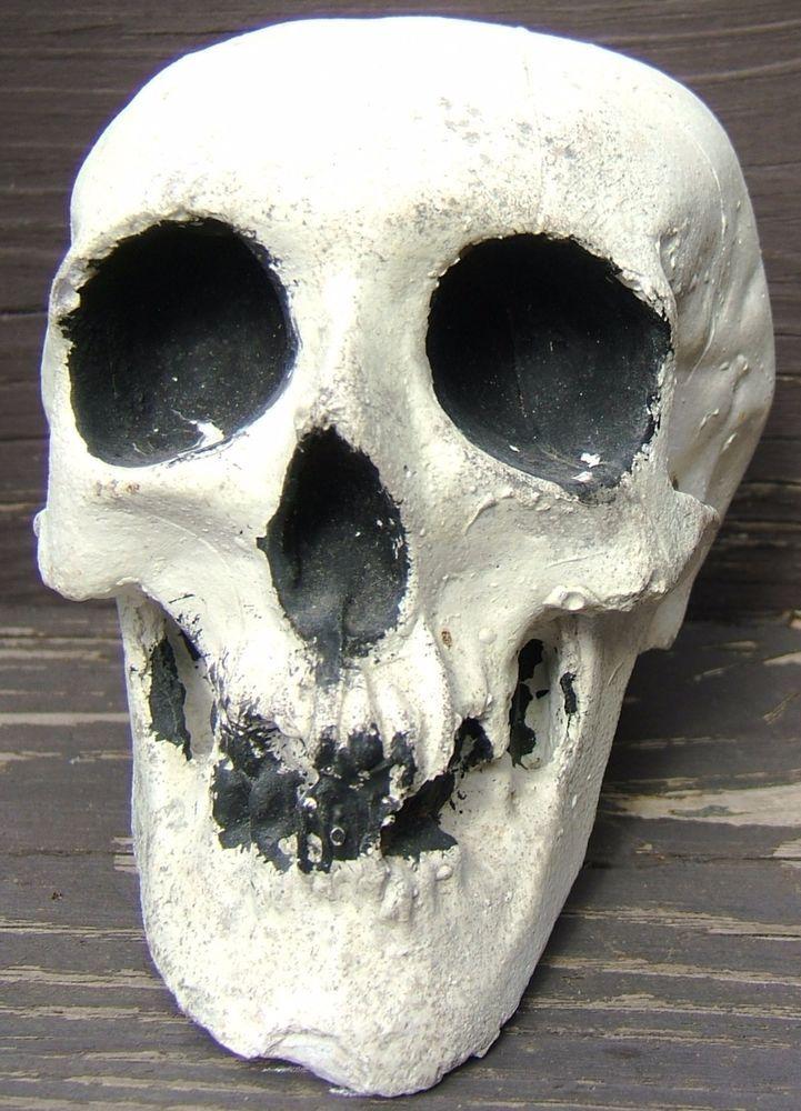 Halloween Skeleton Skull Chalkware Plaster Paris Vintage Halloween - vintage halloween decorations ebay