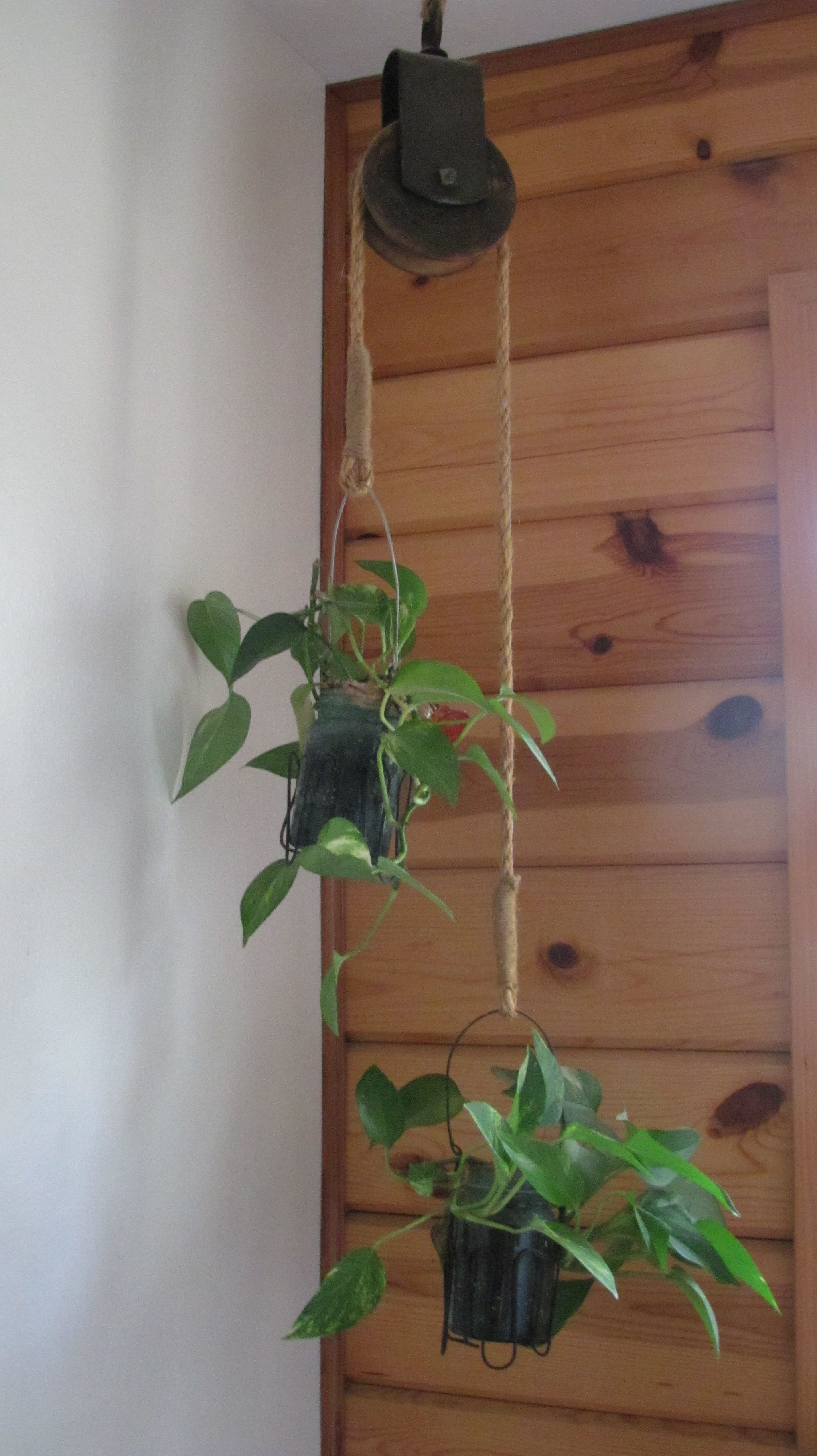 Indoor Wall Mounted Plant Holders Old Barn Pulley Used As A Plant Holder Hanging From