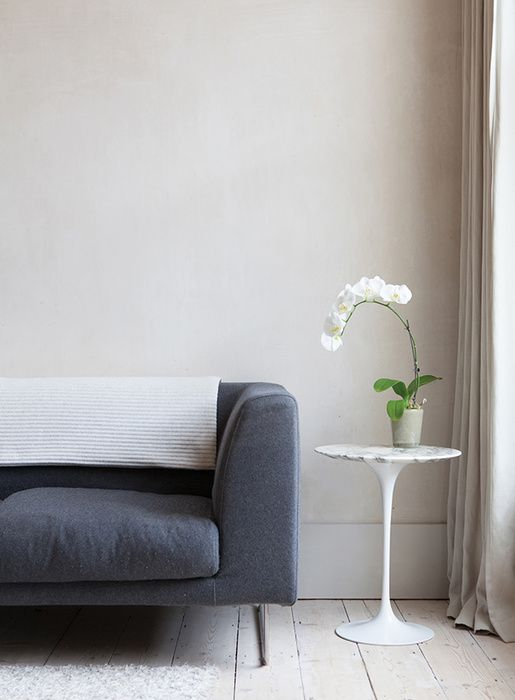 Polished Concrete Walls In Minimalist Living Room With Blue Sofa And Orchid