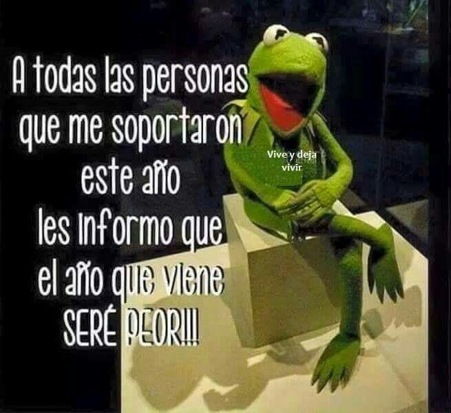 Pin By Idafresa On La Rana Rene Funny Spanish Memes Laughing Quotes Humor
