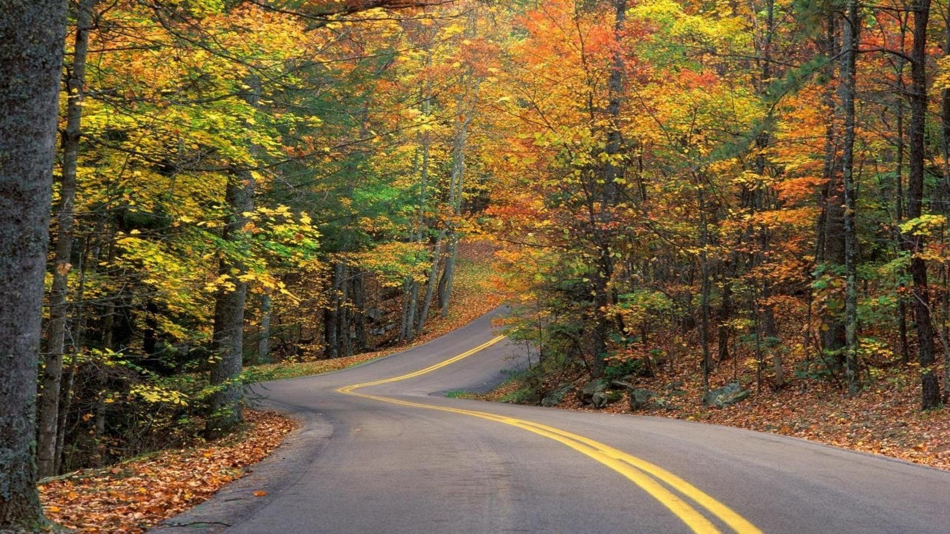 Background Images Of Roads Lastest Beautiful Roads Landscape Fall Wallpaper