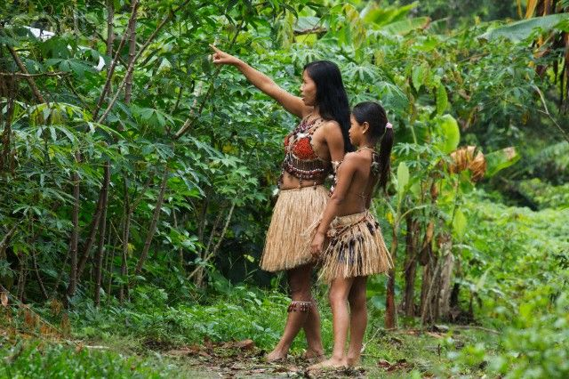 Amazon Rainforest People | Tribes people (8-9) from Amazon ...