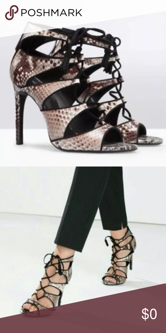 f8a2e71c79c Zara Snakeskin Lace Up Heels Stand out in these snakeskin lace up ...