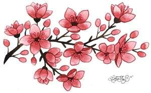 Cherry Blossom Tattoo Meaning Ideas Images Pictures Flower Drawing Cherry Blossom Drawing Cherry Blossom Tattoo