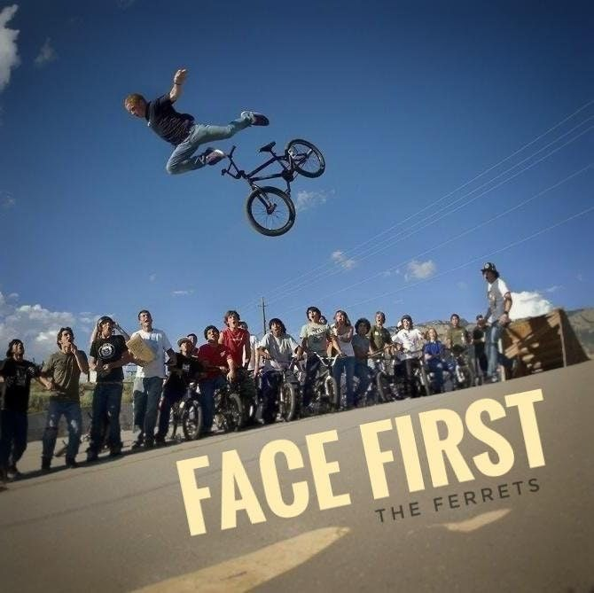 The Ferrets - Face First : fakealbumcovers
