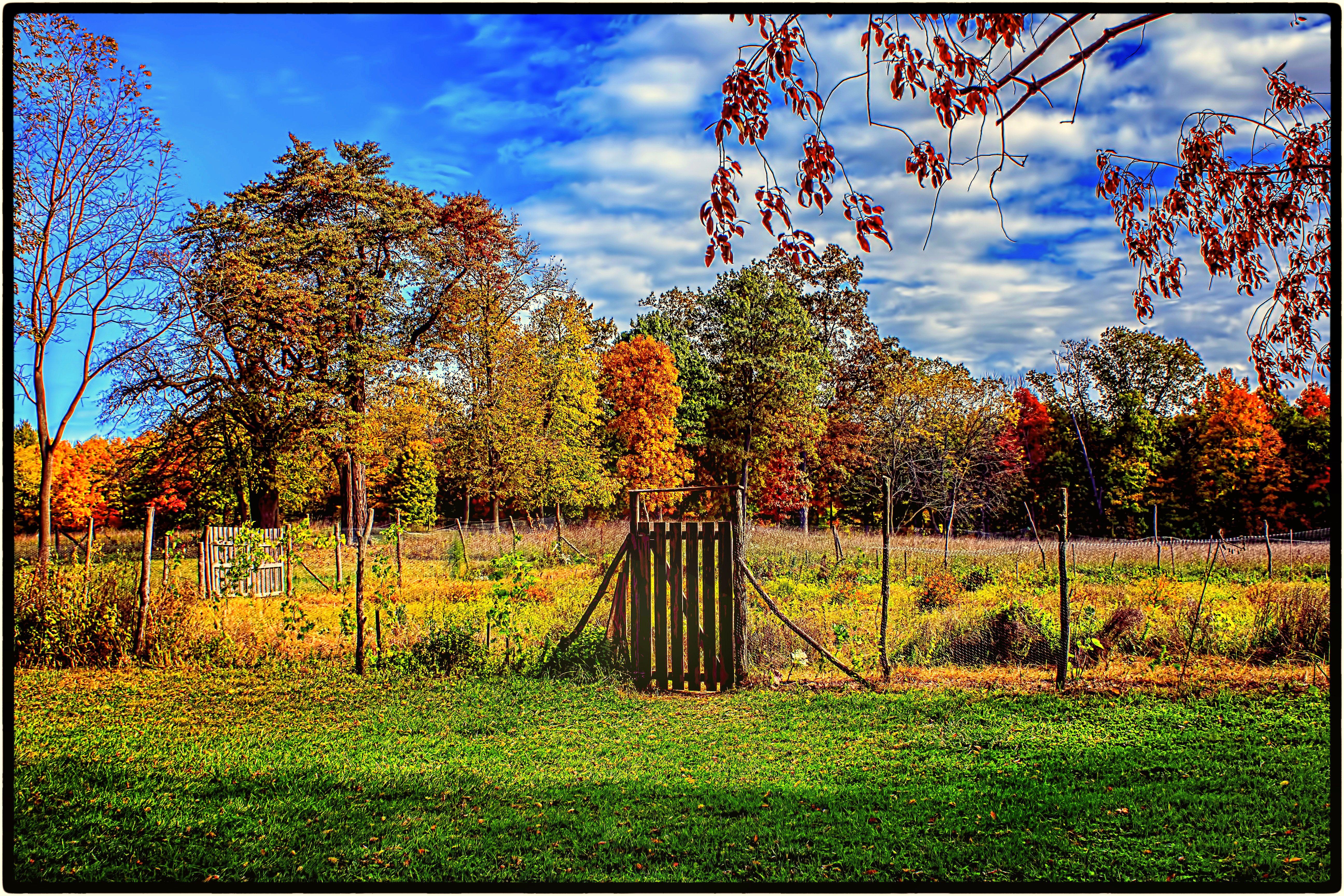 farmgardeninfall1.jpg (5184×3456) Fall background