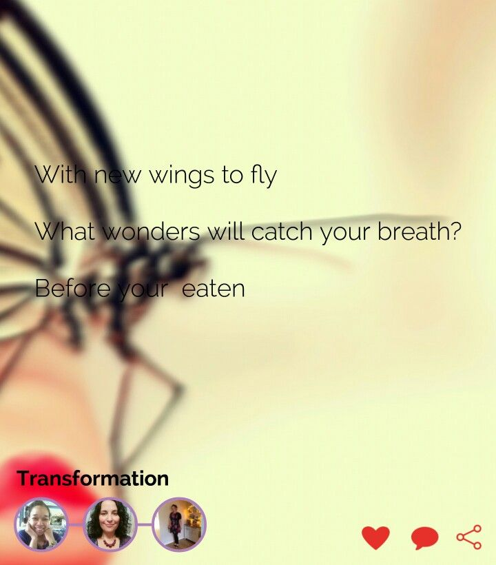 poems about wings to fly