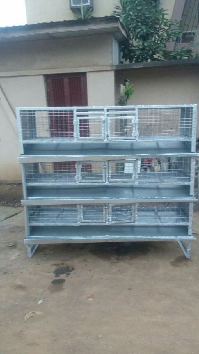 A Cage for grass cutters & rabbits | Cages | Pinterest | Grass cutter