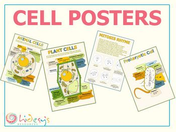 Cell posters educate art projects pinterest plant cell kids cell posters plant cells animal cells prokaryotic diagram poster and a rhyme ccuart Choice Image