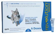 Control Fleas On Cats Prevent Heartworms In Cats Cats That Dont Shed Cats Frontline Plus For Cats