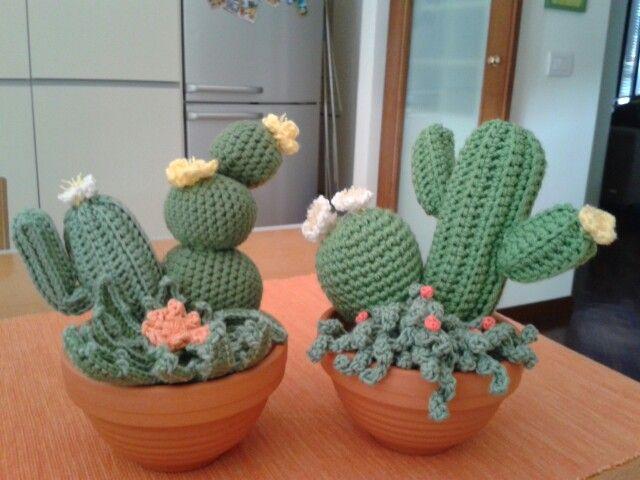 Amigurumi Cactus : Gift kit learn to crochet amigurumi cactus garden course