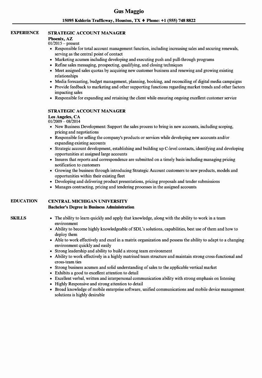 23 Account Executive Resume Examples in 2020 Executive