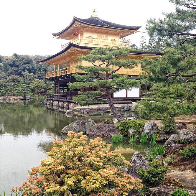 Tokyo Kyoto 7 Jardin De Pierre Et Patisserie De Luxe Places